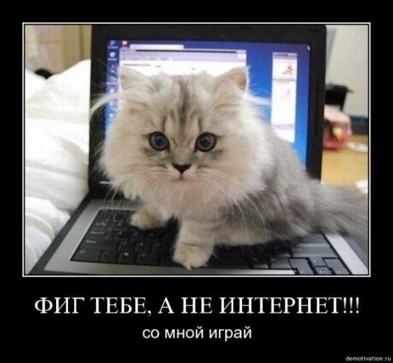 http://content.foto.mail.ru/mail/demotivatoru/_myphoto/i-1428.jpg