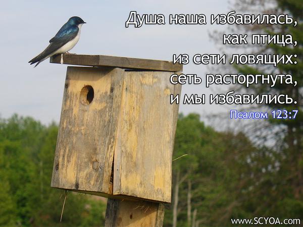 http://content.foto.mail.ru/mail/denisko11/1/i-640.jpg