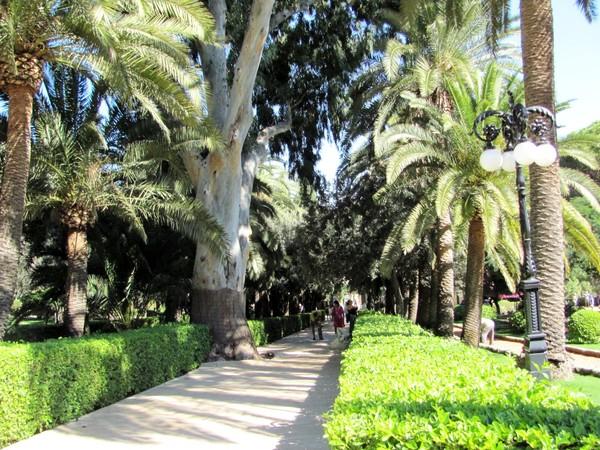 Бахайский сад в Хайфе