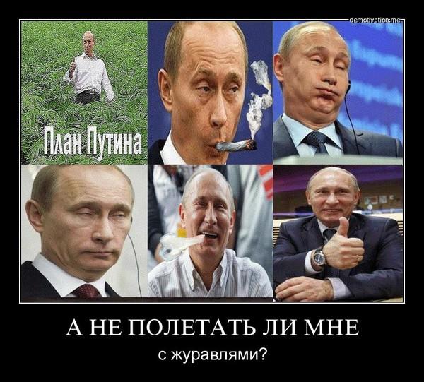 http://content.foto.mail.ru/mail/edik_kaziev/_blogs/i-745.jpg