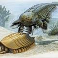 Животный мир :: Рисунки динозавров фото 1.