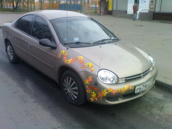 http://content.foto.mail.ru/mail/gavrosh.78/1/i-157.jpg