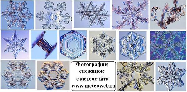 Snowflake01jpg