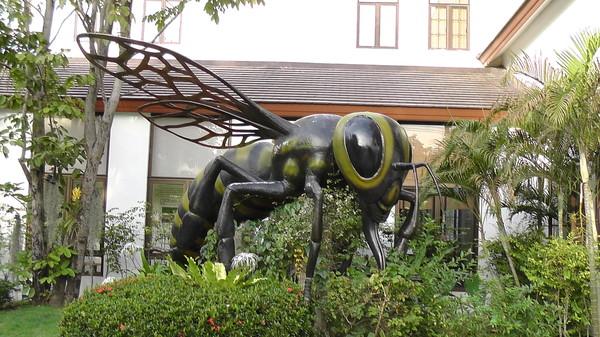 Фото пчелиная ферма Big Bee