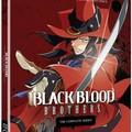Аниме - Братство Черной Крови (Black Blood Brothers)