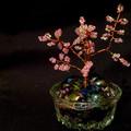Короткая ссылка.  Информация. отзыва. на основе.  Контакты, чтобы купить деревце из бисера.  13 Сентября 2011 16:30.