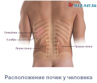 Беременность и боль в пояснице слева