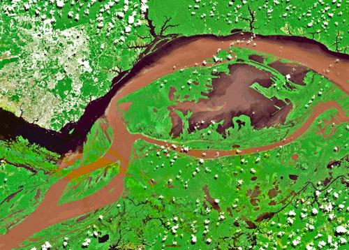 Вид из Космоса на «Встречу вод» - место слияния желтых вод Амазонки и черных вод Риу-Негру (фото с сайта svali.ru)