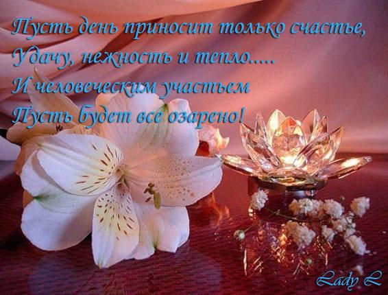Новый день доброе утро люди