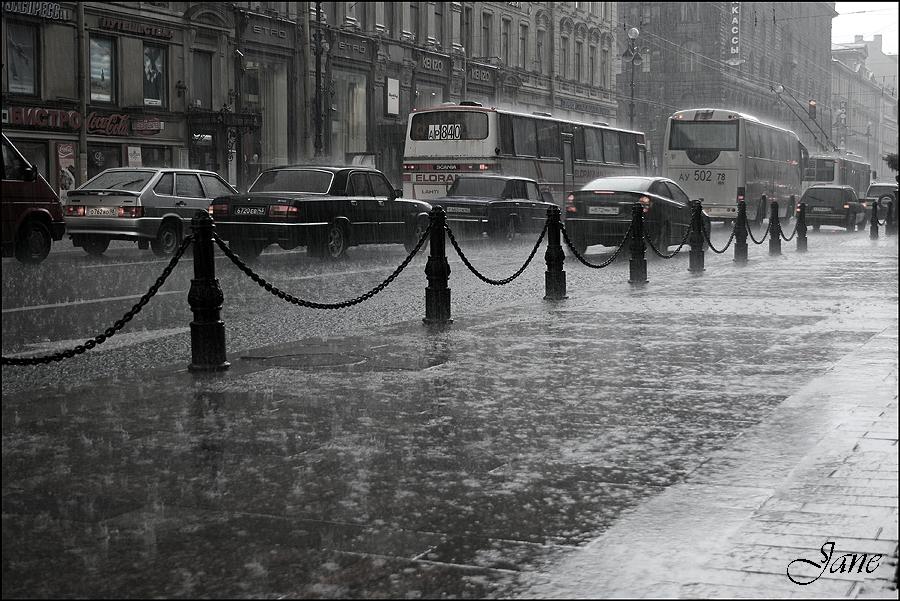 когда сниться дождь