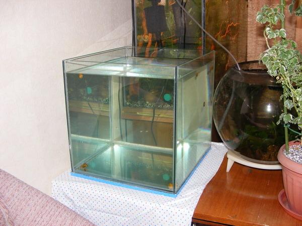 Как сделать пузырьки в грунте аквариума