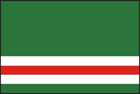 чеченский флаг фото