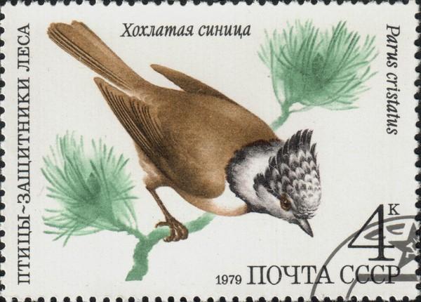 Изображение хохлатой синицы на почтовой марке