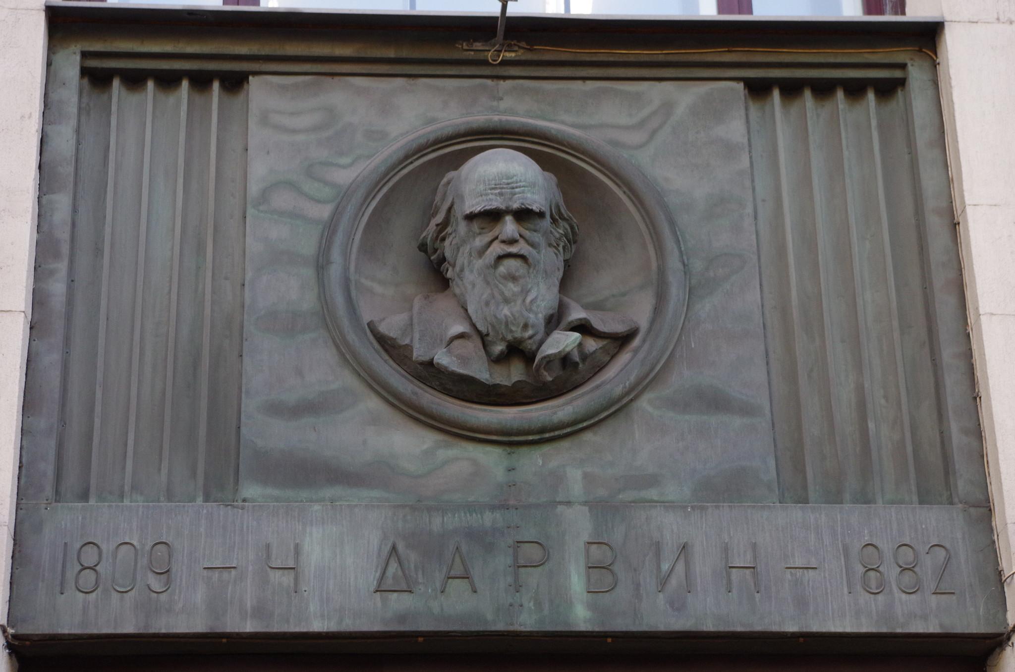 Английский натуралист и путешественник Чарлз Роберт Дарвин (Барельеф на здании Российской государственной библиотеки)