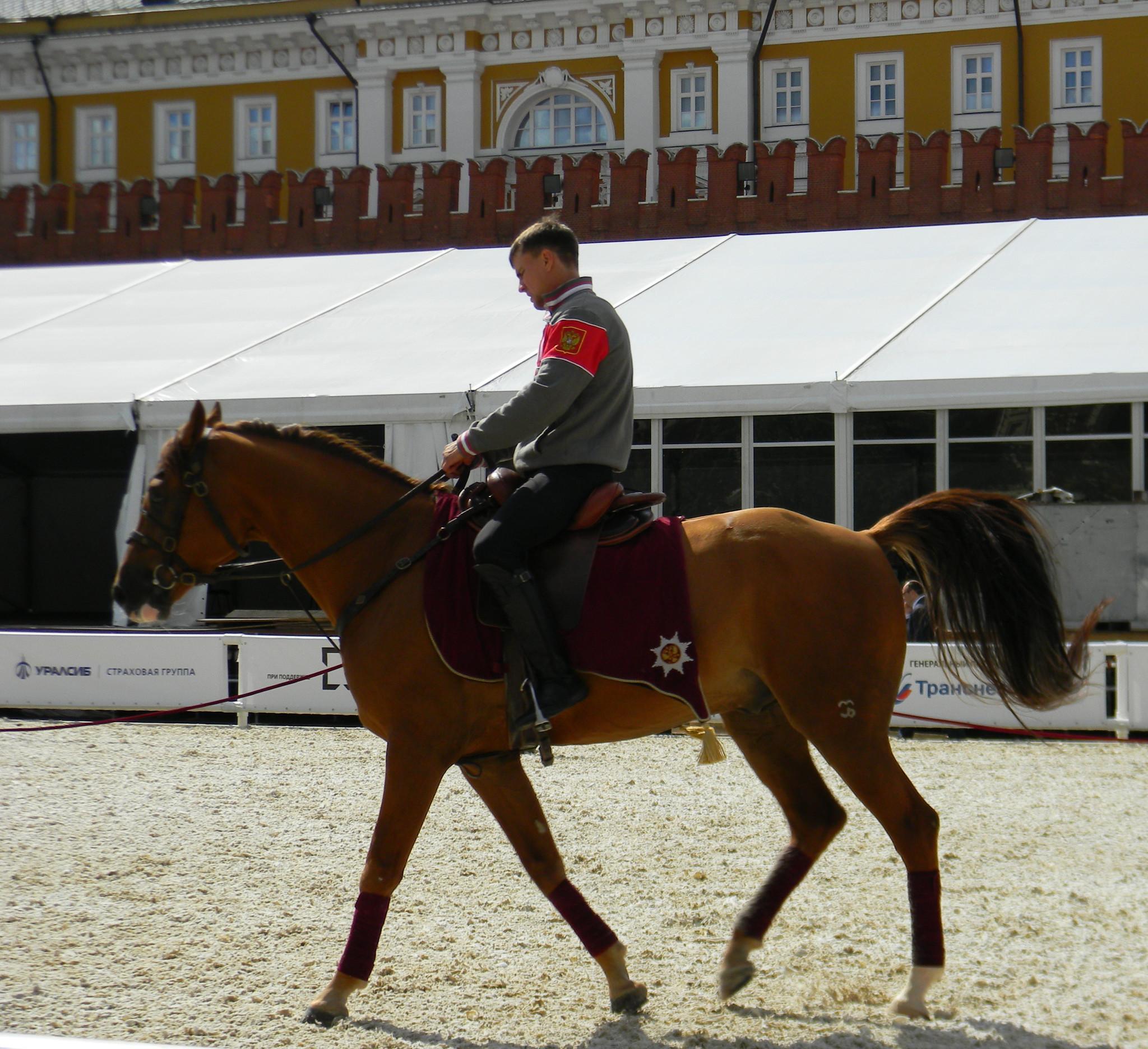 Тренировка наездников на Красной площади