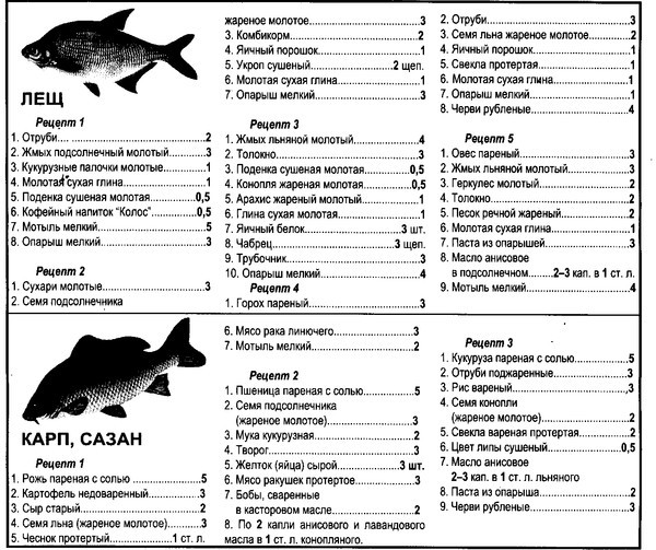 Прикормка для речной рыбы своими руками рецепты