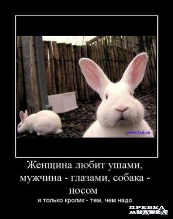 Улыбнуло)))) 882