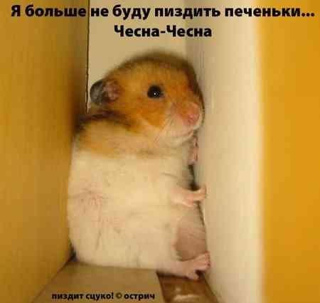 Улыбнуло)))) 822