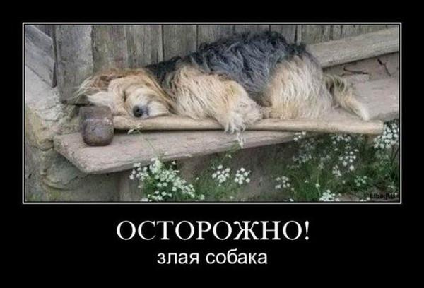 Улыбнуло)))) 046