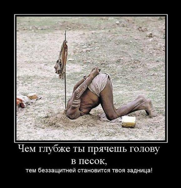 Улыбнуло)))) 428