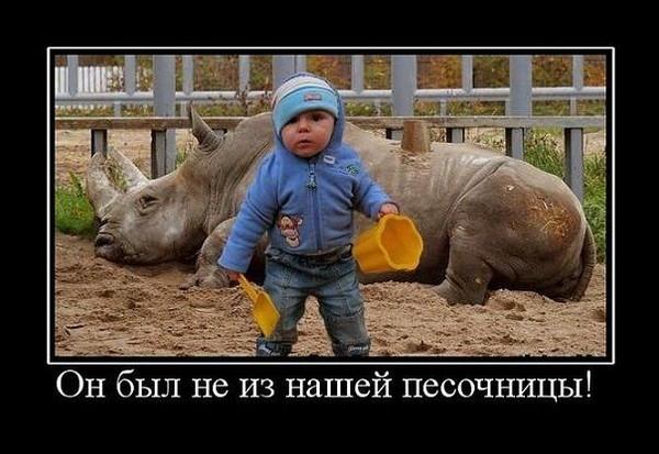 Улыбнуло)))) 446