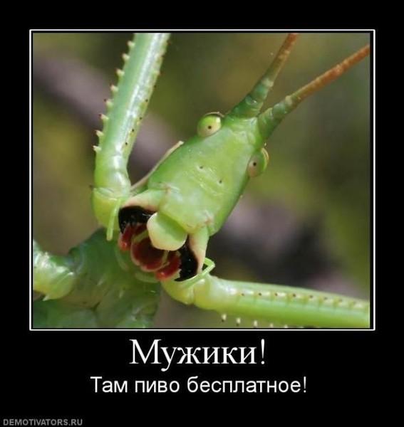 Улыбнуло)))) 442