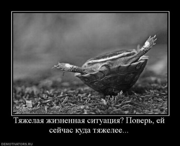 Улыбнуло)))) 284