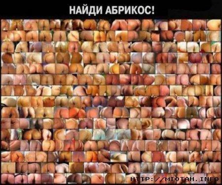 Улыбнуло)))) 482