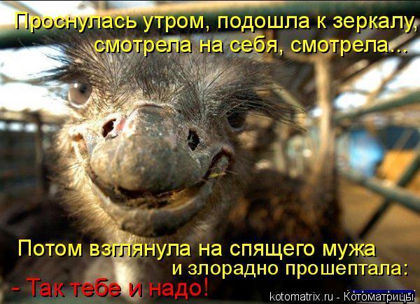 Улыбнуло)))) 460