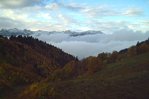 http://content.foto.mail.ru/mail/koshmarrik/82/i-103.jpg