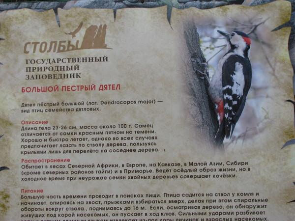 http://content.foto.mail.ru/mail/ksruss/13556/i-13792.jpg