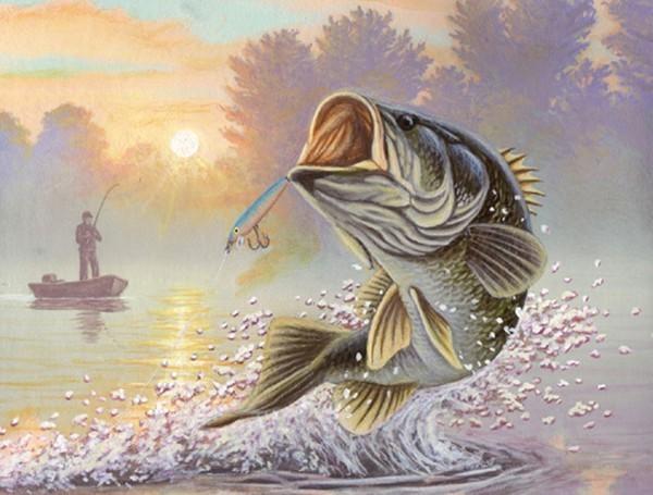Рыбки картинки для детей цветные - 9