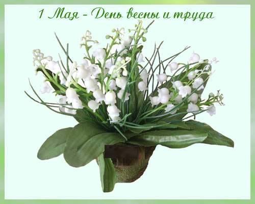 http://content.foto.mail.ru/mail/larisa.zimina/_blogs/i-15673.jpg