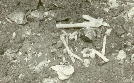 Кто и когда на самом деле осквернил и уничтожил некрополь Грузинских князей у Храма Всех Святых на Соколе в Москве. I-1024