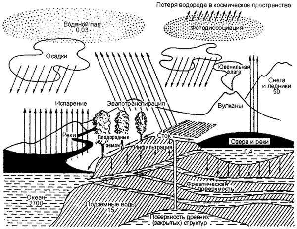 Общая схема круговорота воды (по Ф. Рамаду, 1981) .