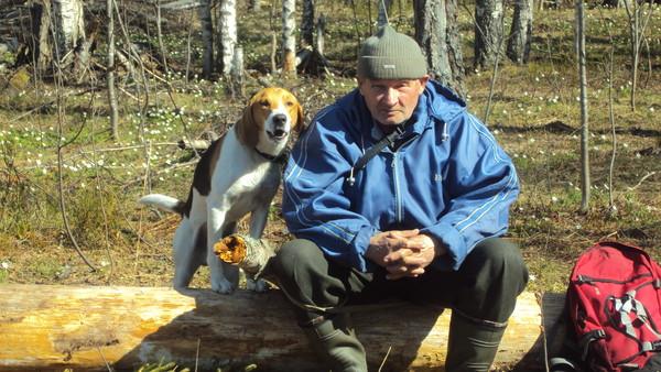ПИТЕРСКИЕ ГОНЧИЕ - Просмотр темы - Охота с эстонской гончей