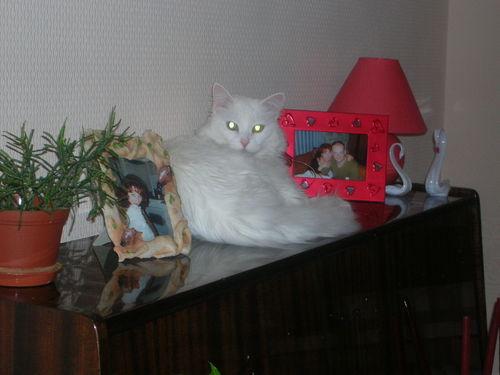 http://content.foto.mail.ru/mail/lettas2001/75/i-80.jpg