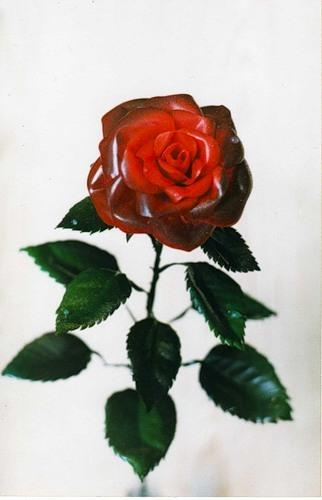Как сделать розы из пластиковой бутылки своими