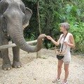 провинция Phang-nga. После поездки на слонопотаме