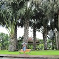 Бангкок. Парк Лумпини