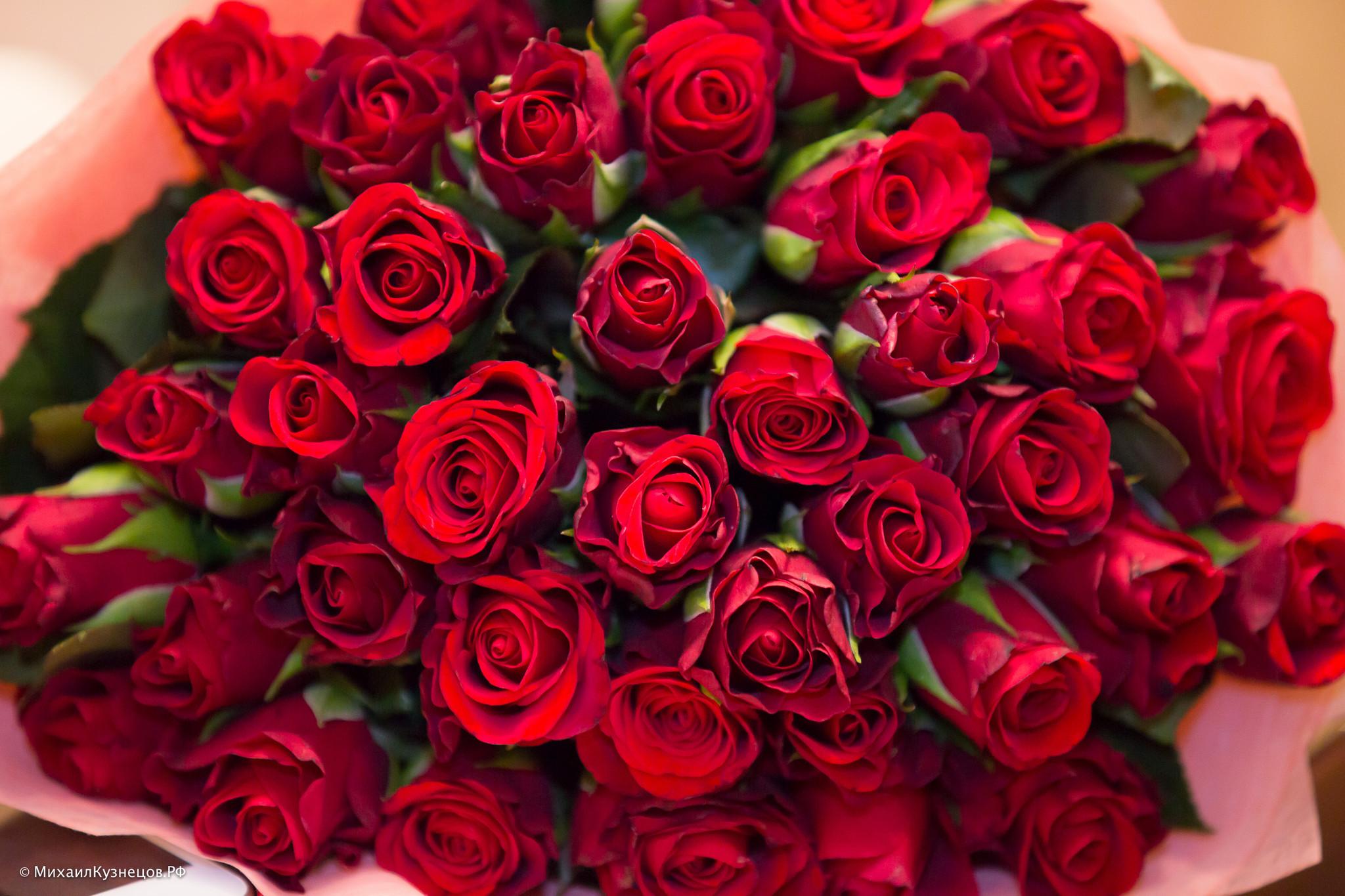 Фото розы на полу
