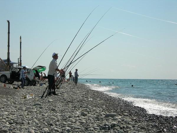 английские снасти для рыбалки