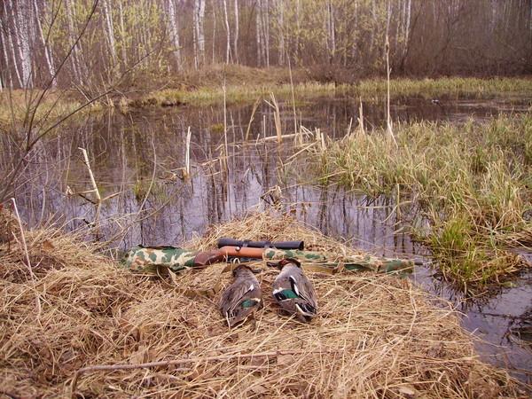 ОХОТНИКИ.  Малокалиберная винтовка ТОЗ-8 1960гг - 1964гг, кто то охотиться с таковыми ещё?