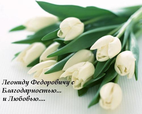 http://content.foto.mail.ru/mail/nata4519/12/i-116.jpg