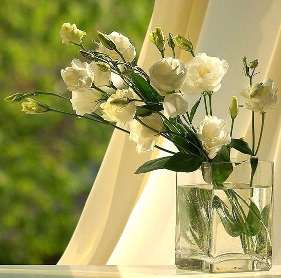 Виды цветы для букетов
