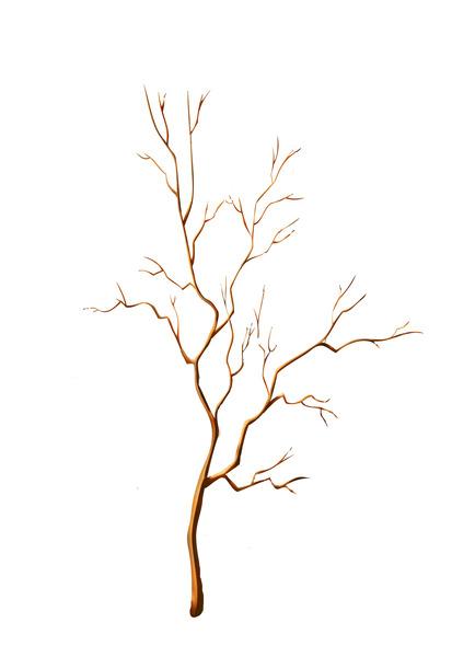 Скажите что дерево голенькое а на