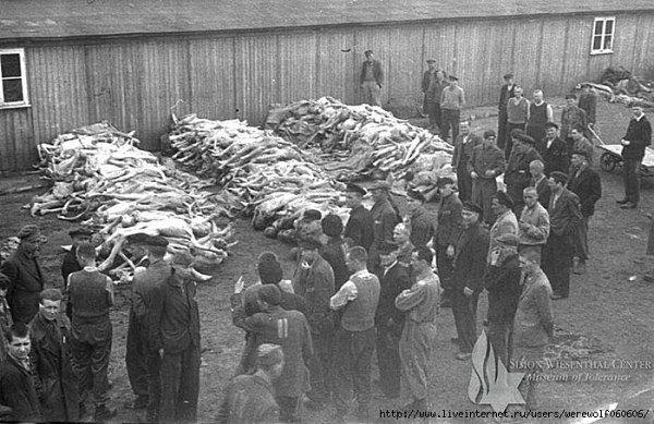 концлагеря второй мировой войны фото факты проекты