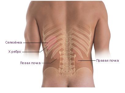Боли в спине слева при остеохондрозе
