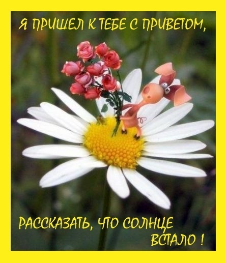http://content.foto.mail.ru/mail/natusya-kolyu4ka/_blogs/i-260.jpg