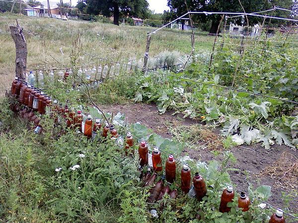 Забор из пластиковых бутылок - Поделки